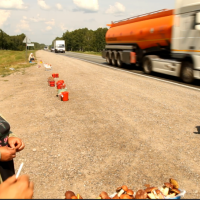 2013-07-21_174652-siberian-highway-mushrooms-and-strawberries