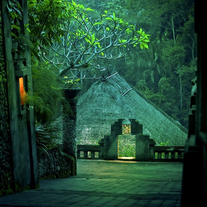 Indonesia Gets Green Growth
