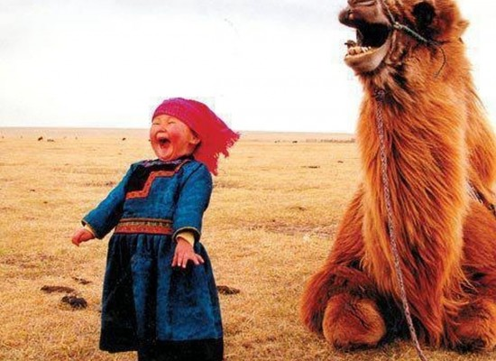 Tourism is Big Business for Mongolia