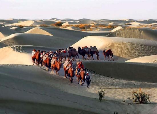 Retracing the Silk Road