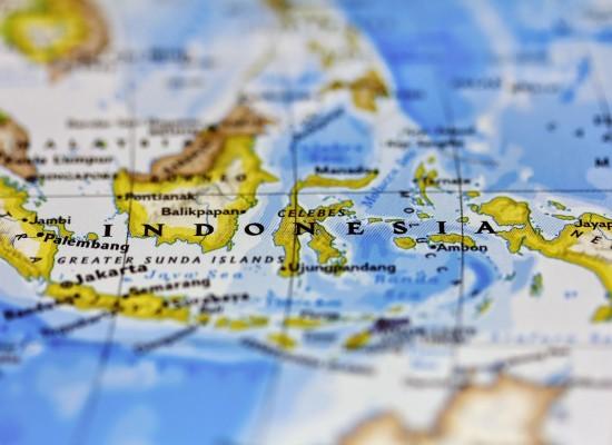 Indonesia grants Sri Lankans visa free entry to enhance trade