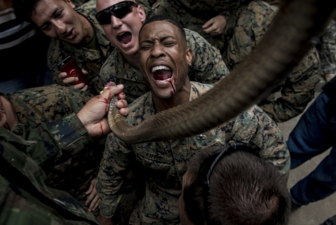 American And South Korean Marines Learn Jungle Survival Skills In Thailand